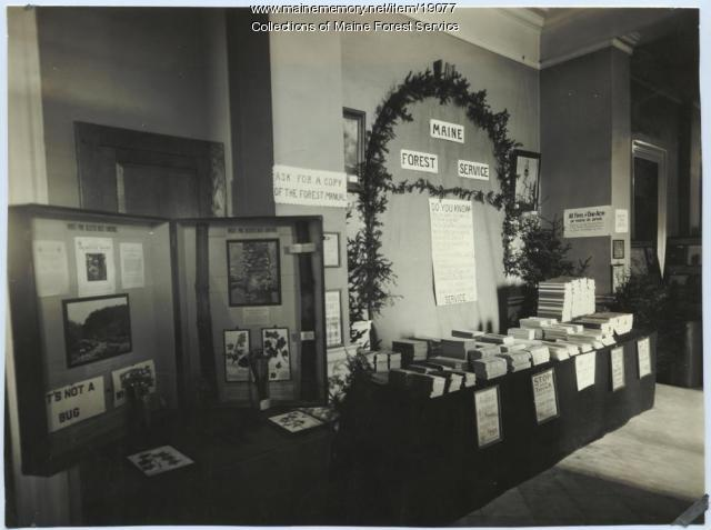 Forest Department display, 1921