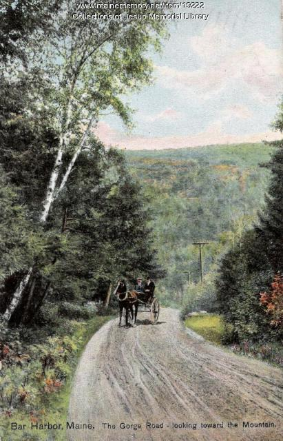 The Gorge Road in Bar Harbor