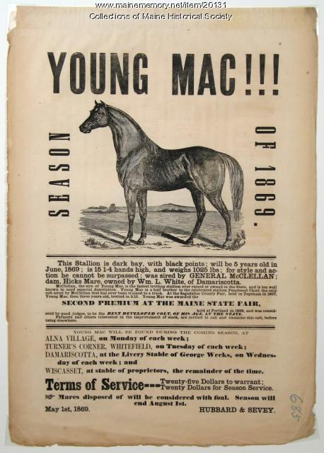 Stallion broadside, 1869