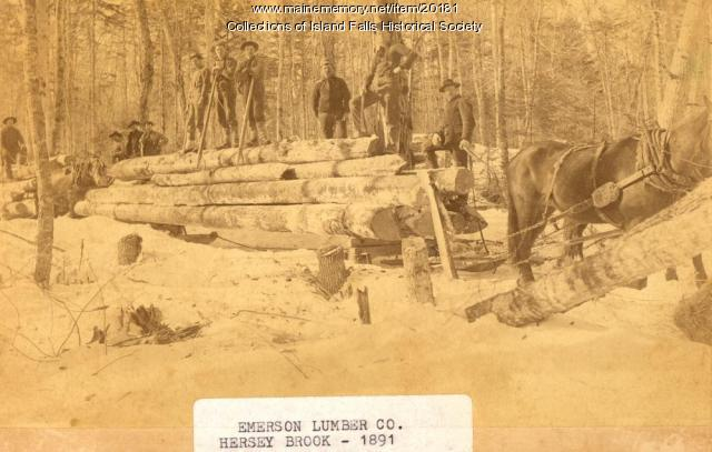 Emerson Lumber Company, Hersey Brook, 1891