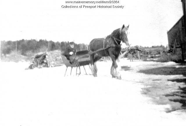 Wallace Martin Pettengill and sleigh, Freeport, ca. 1920