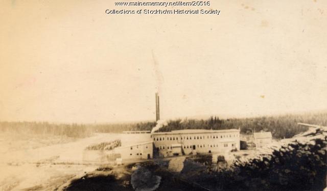 Veneer Mill, Stockholm, ca. 1900