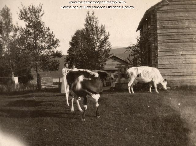 Farm, New Sweden, ca. 1910
