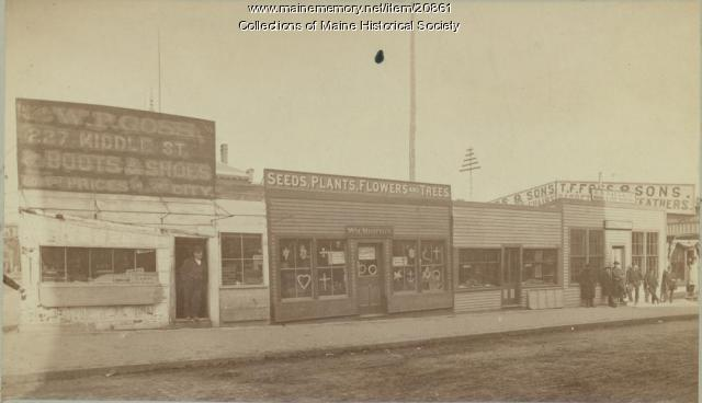 Middle Street, Portland, ca. 1886