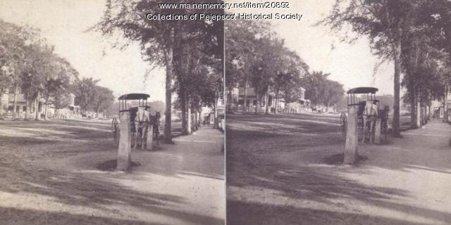 Maine and Lincoln streets, Brunswick, ca. 1880
