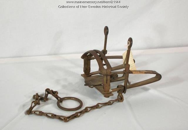 Fox trap, New Sweden, ca. 1870