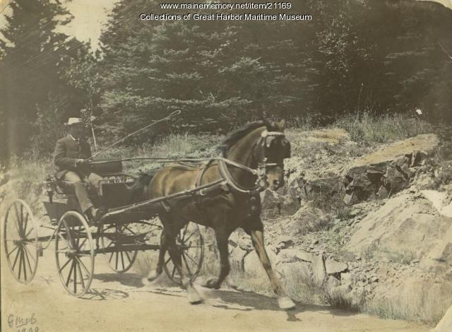 Horse and Carriage Near Head of Somes Sound, 1909