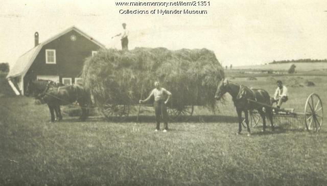 Haying, Woodland, ca. 1922
