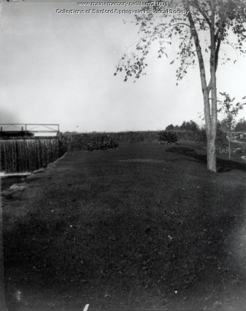 Gardens of the Alpaca Mills, Springvale
