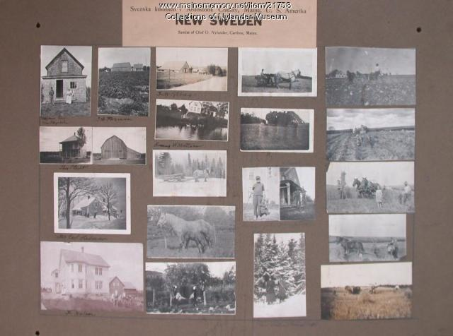 Nylander samlat 6, New Sweden, 1922