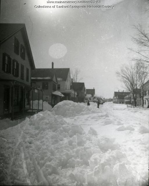 Stereoview of Main Street, Springvale, 1888