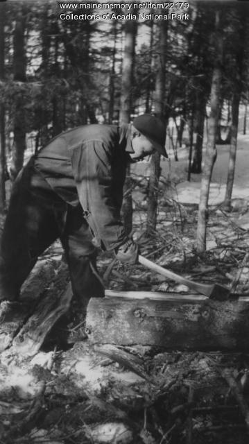CCC Worker in Acadia National Park, ca. 1934
