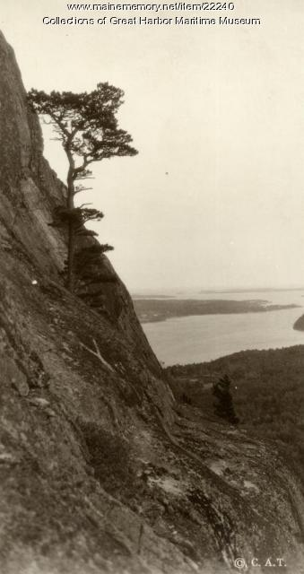 View from Robinson's Mountain, ca. 1885