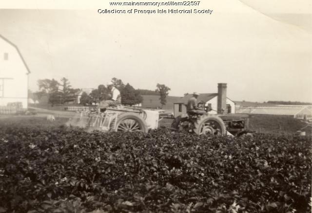 Spraying potatoes, Presque Isle, ca. 1942