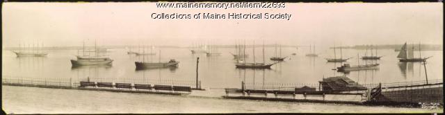 Sailing vessels in Portland Harbor, ca. 1910