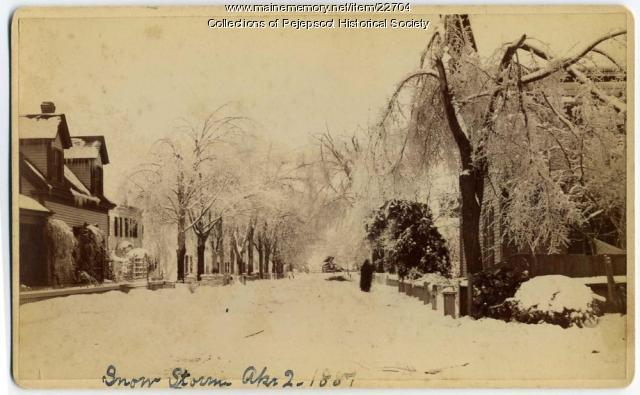 Brunswick snow storm, April 2, 1887