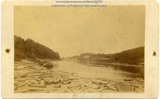 Logging, Androscoggin River, ca. 1880