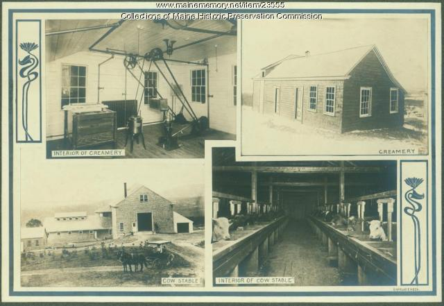 Dairy operation, Maine State Sanatorium, Hebron, ca. 1909