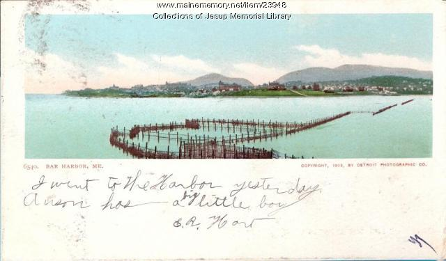 Fishing weir, Bar Harbor, 1903