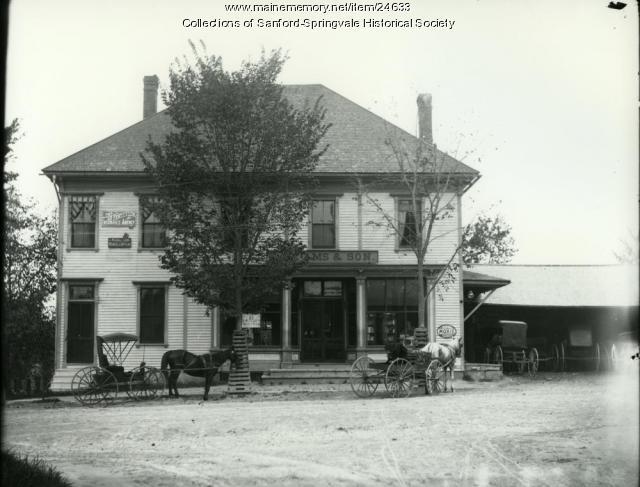 W. Adams & Son Store, Limerick, ca. 1890