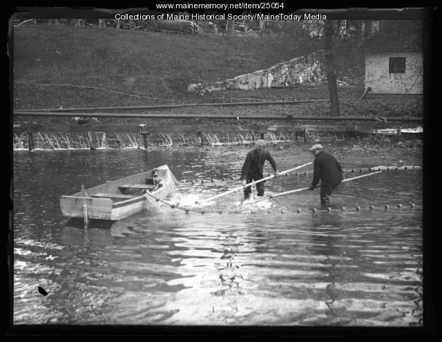 Item 25054 maine state fish hatchery 1 raymond 1926 for Maine state fish