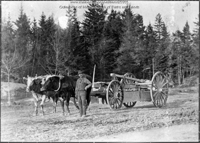 Galamander at Mount Waldo, ca. 1860