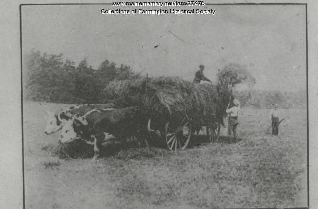 Haying, Farmington, ca. 1910