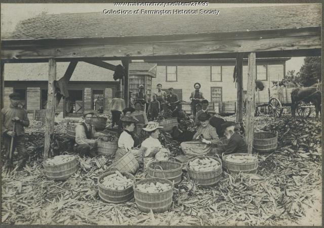 E. S. Dingley Corn Shop crew and huskers, Farmington Falls, ca. 1900