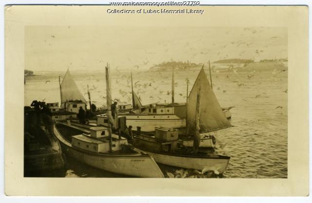 Sailing Sardine Carriers Docking, Lubec, ca. 1900