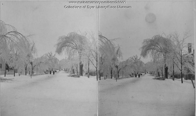 Ice Storm, Saco, ca. 1880