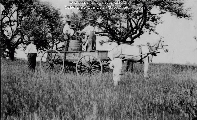 Orchard Spraying, Berwick, 1917