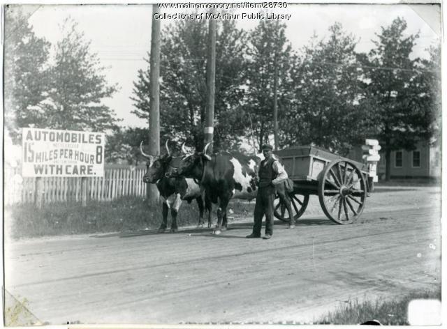 Ox team near Five Points, Biddeford, 1910