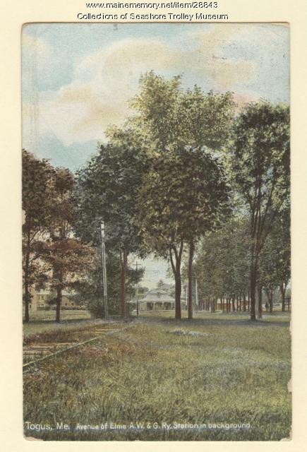 Avenue of Elms, Togus, ca. 1910