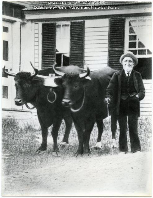 "Solon Chase and ""Them Steers,"" Turner, ca. 1873"
