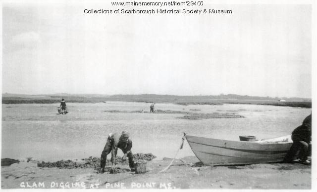 Clam Diggers at Fishermen's Cove, Scarborough, ca. 1900