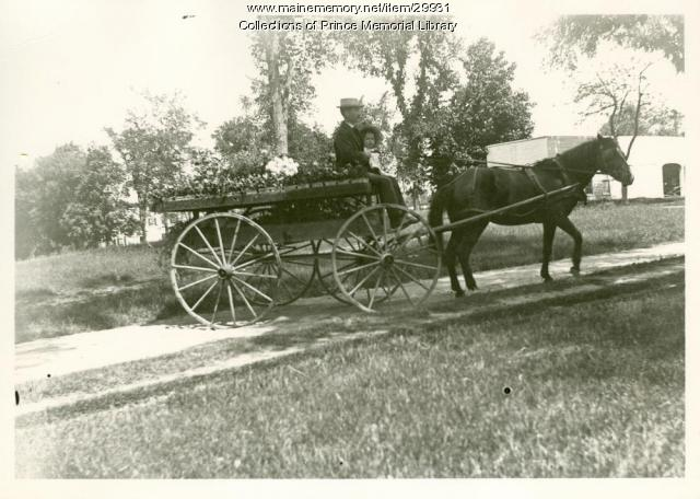 Arno S. Chase flower delivery wagon, Cumberland, ca. 1910