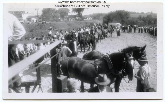 Horse Pulling at Guilford Fair, 1946