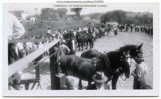 Horse Pulling at Guilford Fair, 1946