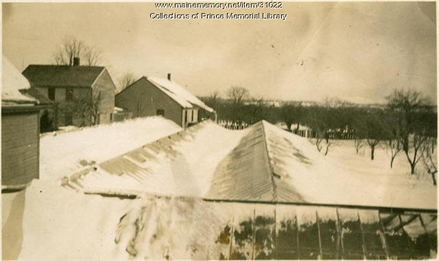 Arno S. Chase greenhouses after blizzard, Cumberland, 1920