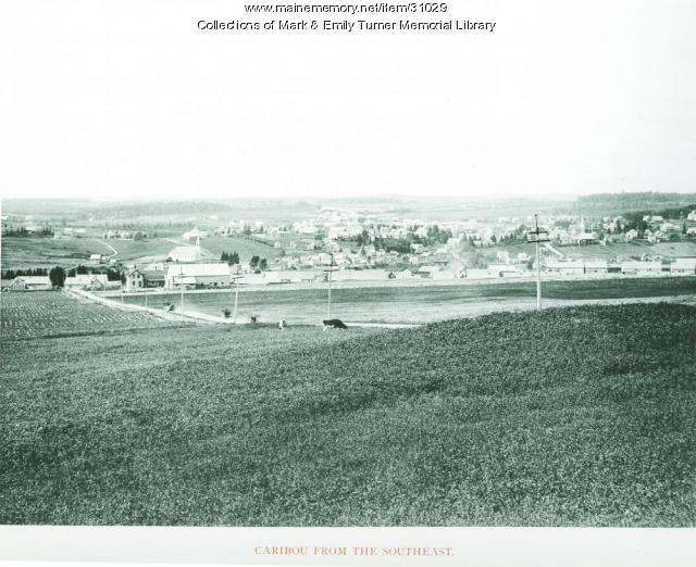 View of Caribou, 1895