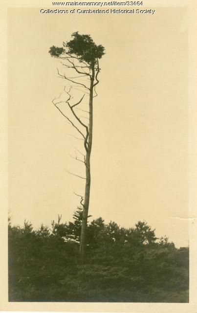 "Last of ""Twelve Apostles"" navigational aide, Cumberland, ca. 1930"