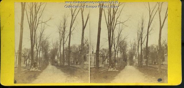 Broadway from State Street, Bangor, ca. 1869