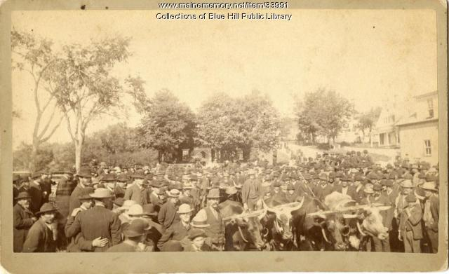 Blue Hill Fair crowd, ca. 1890