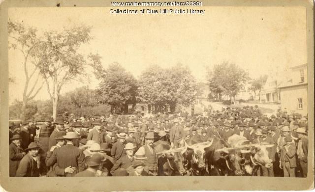 Blue Hill Fair crowd, ca. 1890
