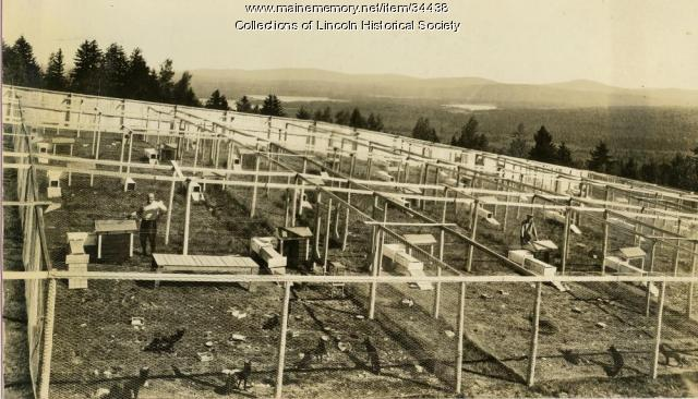 #1 Gordon Fox Ranch, Lincoln, ca. 1920