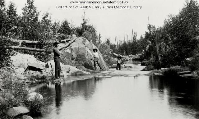 Stream at low water, Aroostook County, ca. 1900