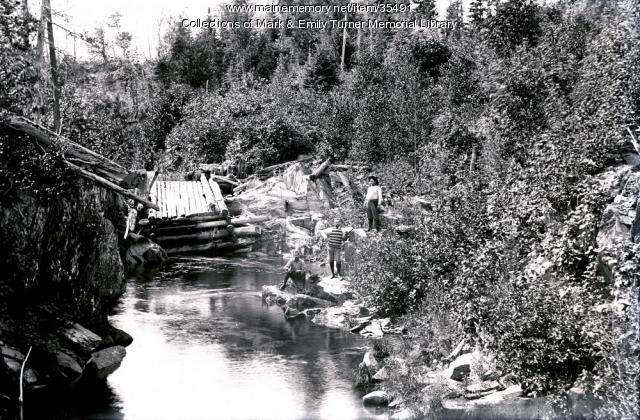 Collapsed walking bridge, Penobscot County, ca. 1900