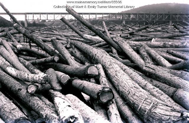 Log jam at Sheridan Bridge, Sheridan, ca. 1902