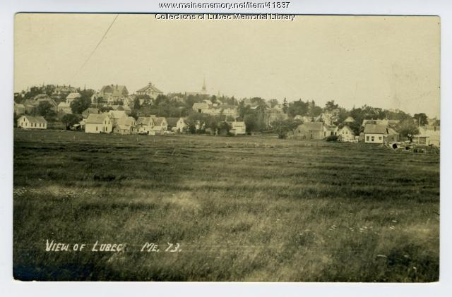 View of Lubec from the Mowry pasture, 1910
