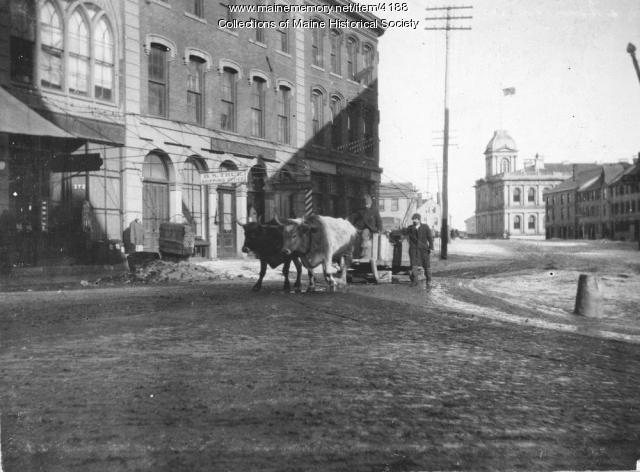 Oxen and sled, Fore Street, Portland
